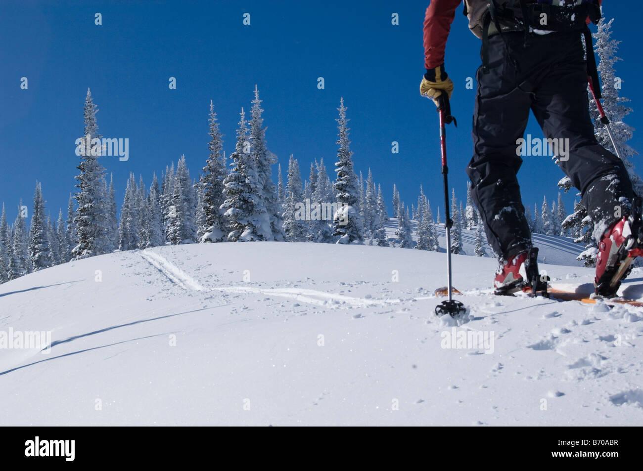 Backcountry ski traverse in Glacier National Park, MT. - Stock Image
