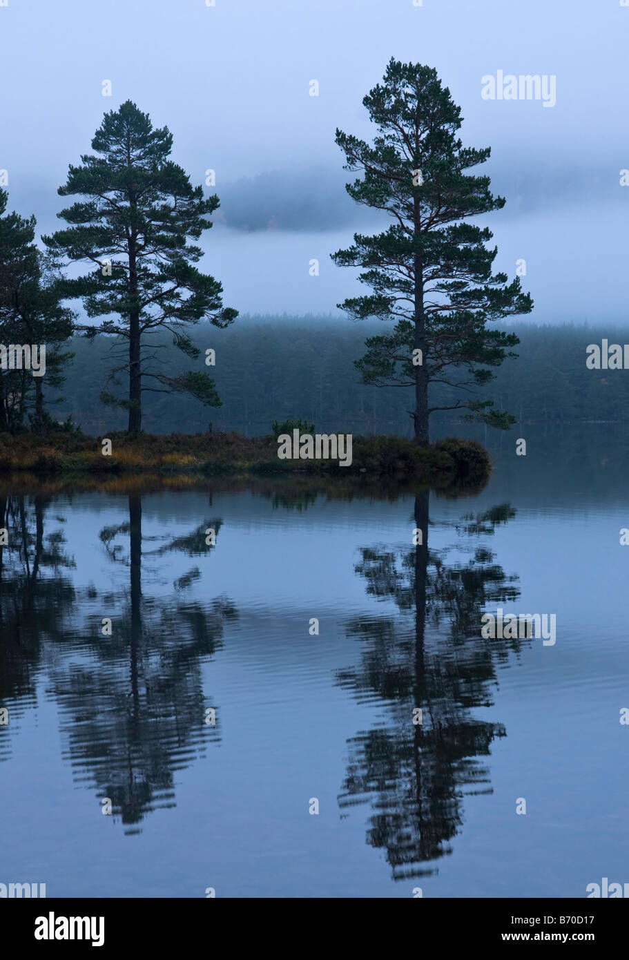Misty morning at Loch an Eilein, Cairngorms National Park - Stock Image