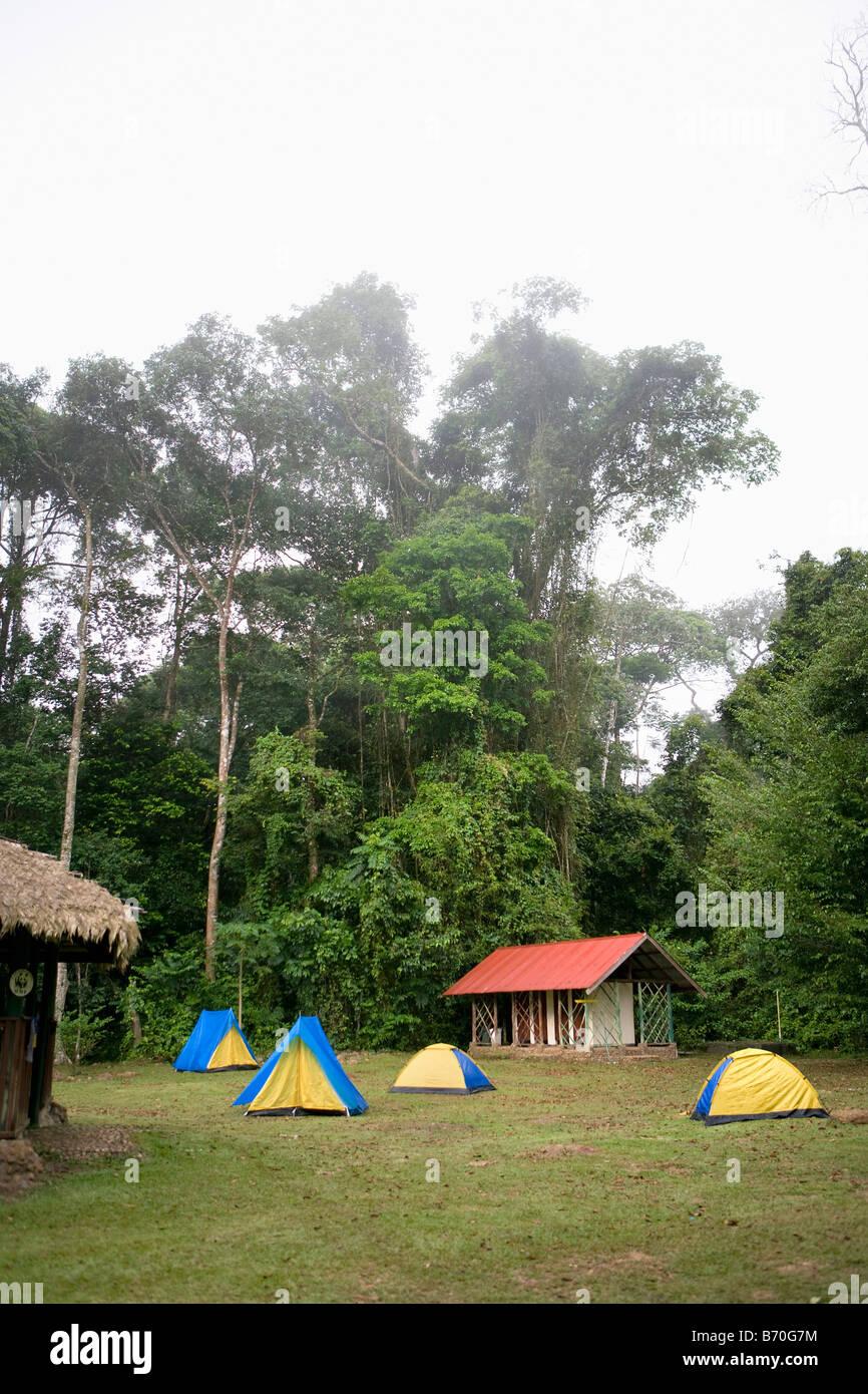 Suriname, Brownsweg, Brownsberg National Park.  Camping. - Stock Image
