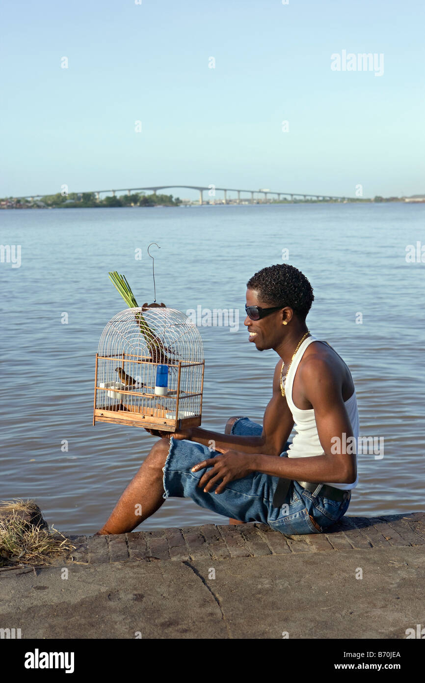 Suriname, Paramaribo. Creole man and singing picolet bird, eating rice-grass. Suriname river and Wijdenbosch bridge. - Stock Image