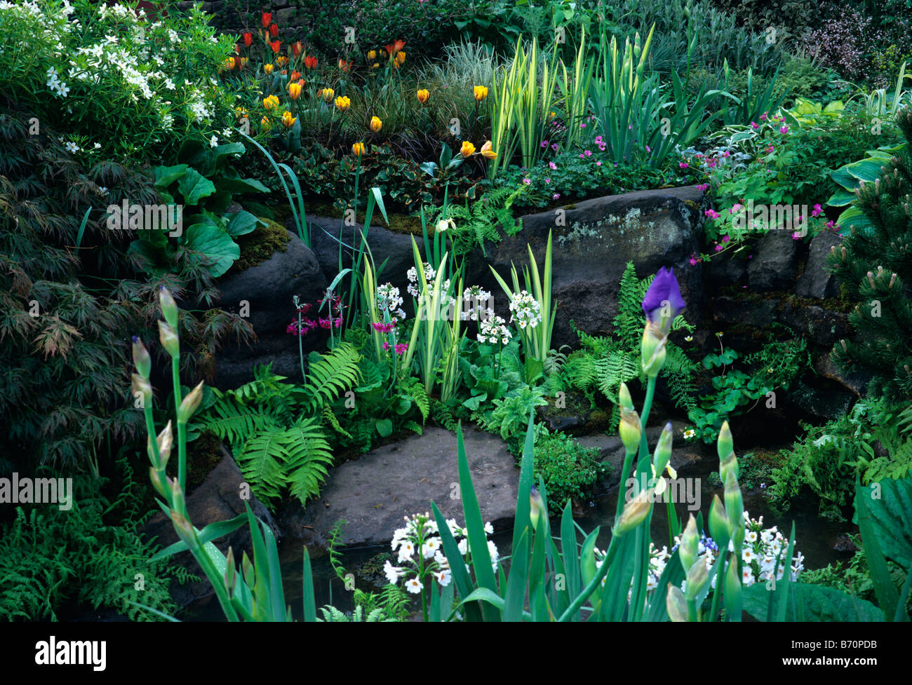 Spring rockery and water garden - Stock Image