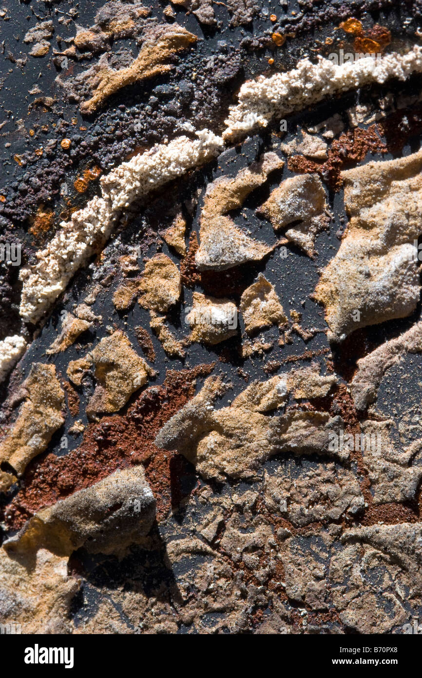 Background abstract texture of rusted metal in brown black red orange and white earth tone colors - Stock Image