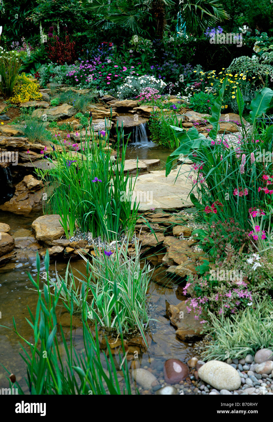 Attractive streamside planting with small waterfalls into a garden pond - Stock Image