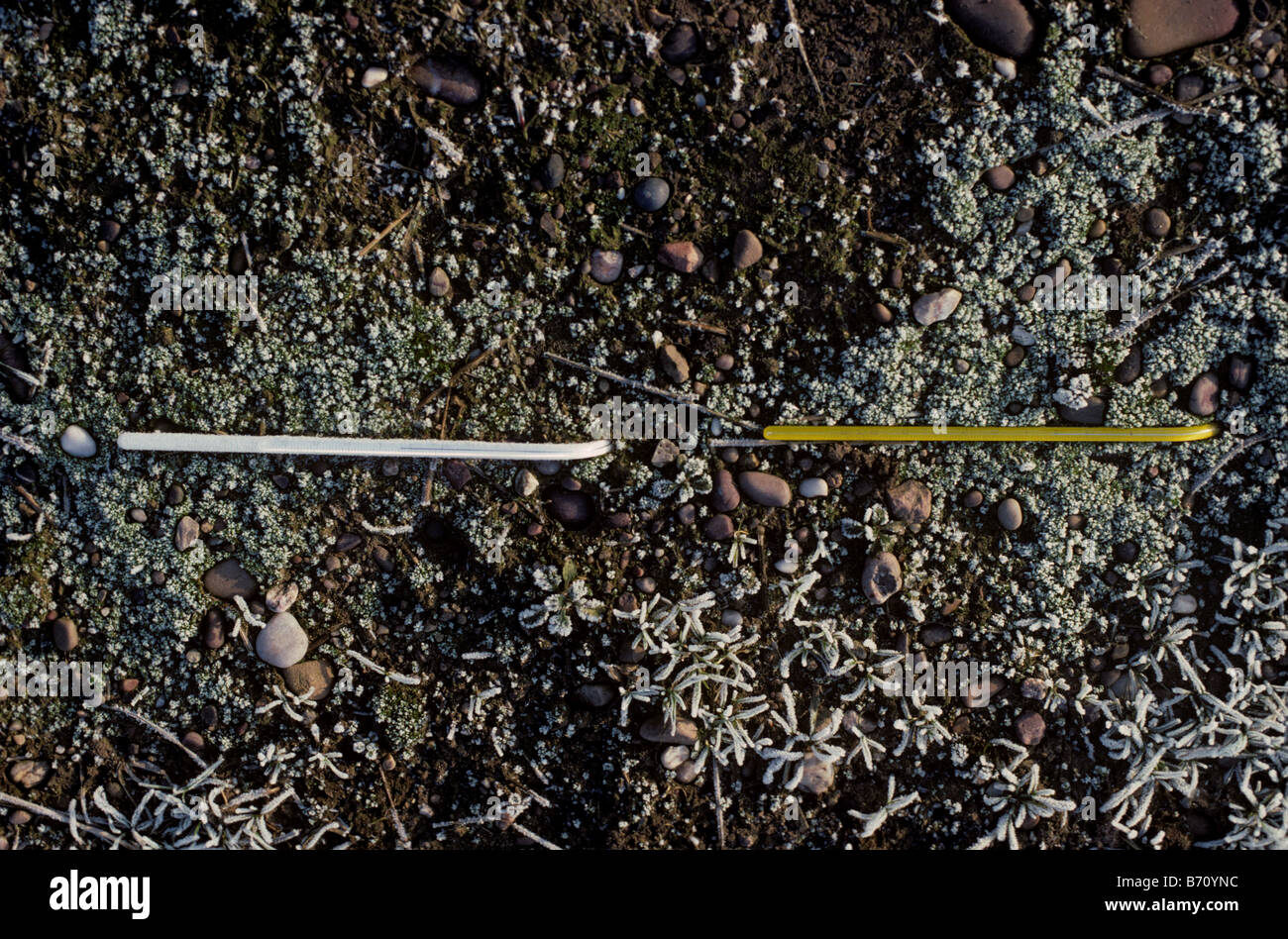 Weather measurement two thermometers buried at different soil depths to measure ground temperatures - Stock Image