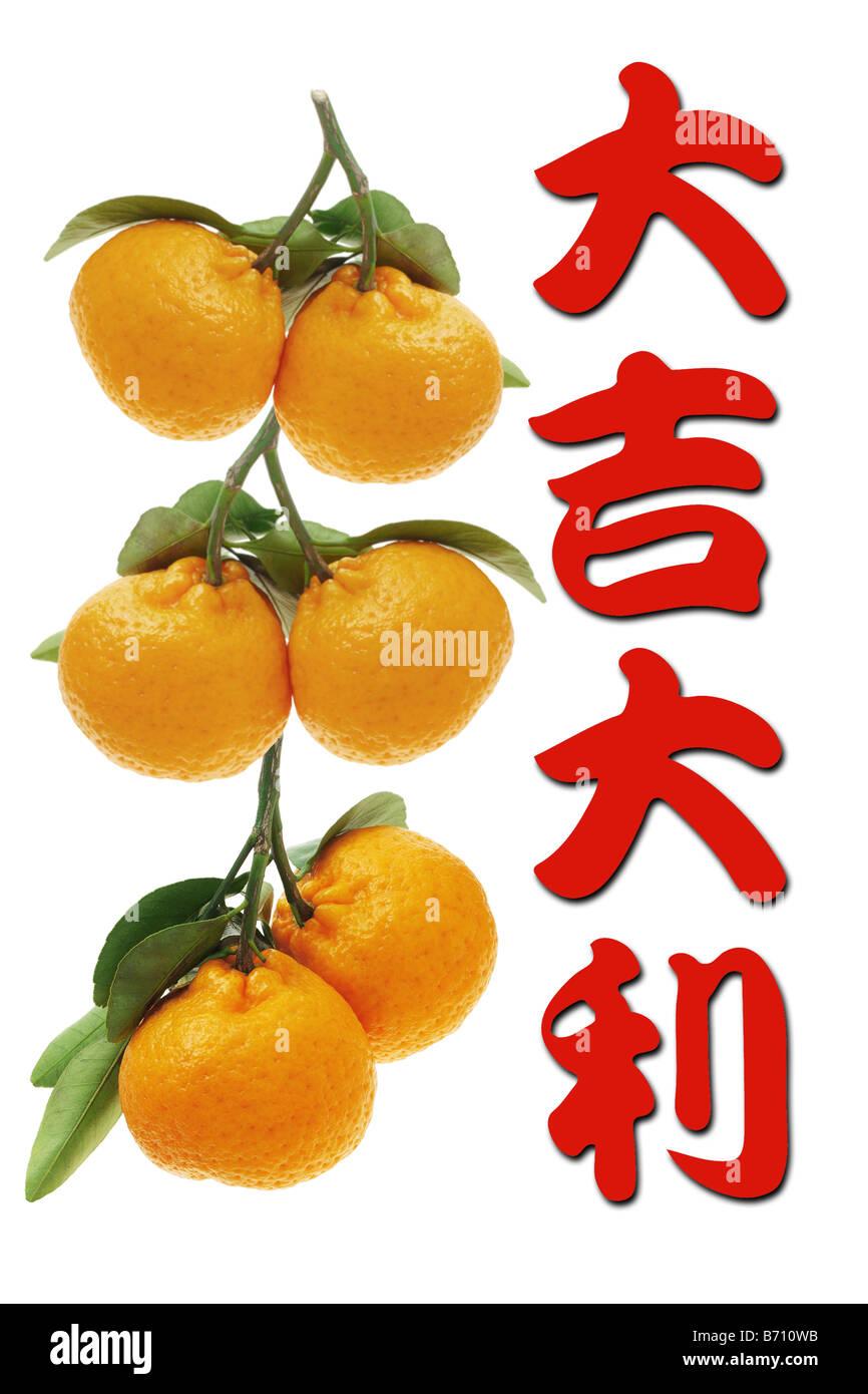 Chinese new year greetings and mandarin oranges on white background chinese new year greetings and mandarin oranges on white background m4hsunfo