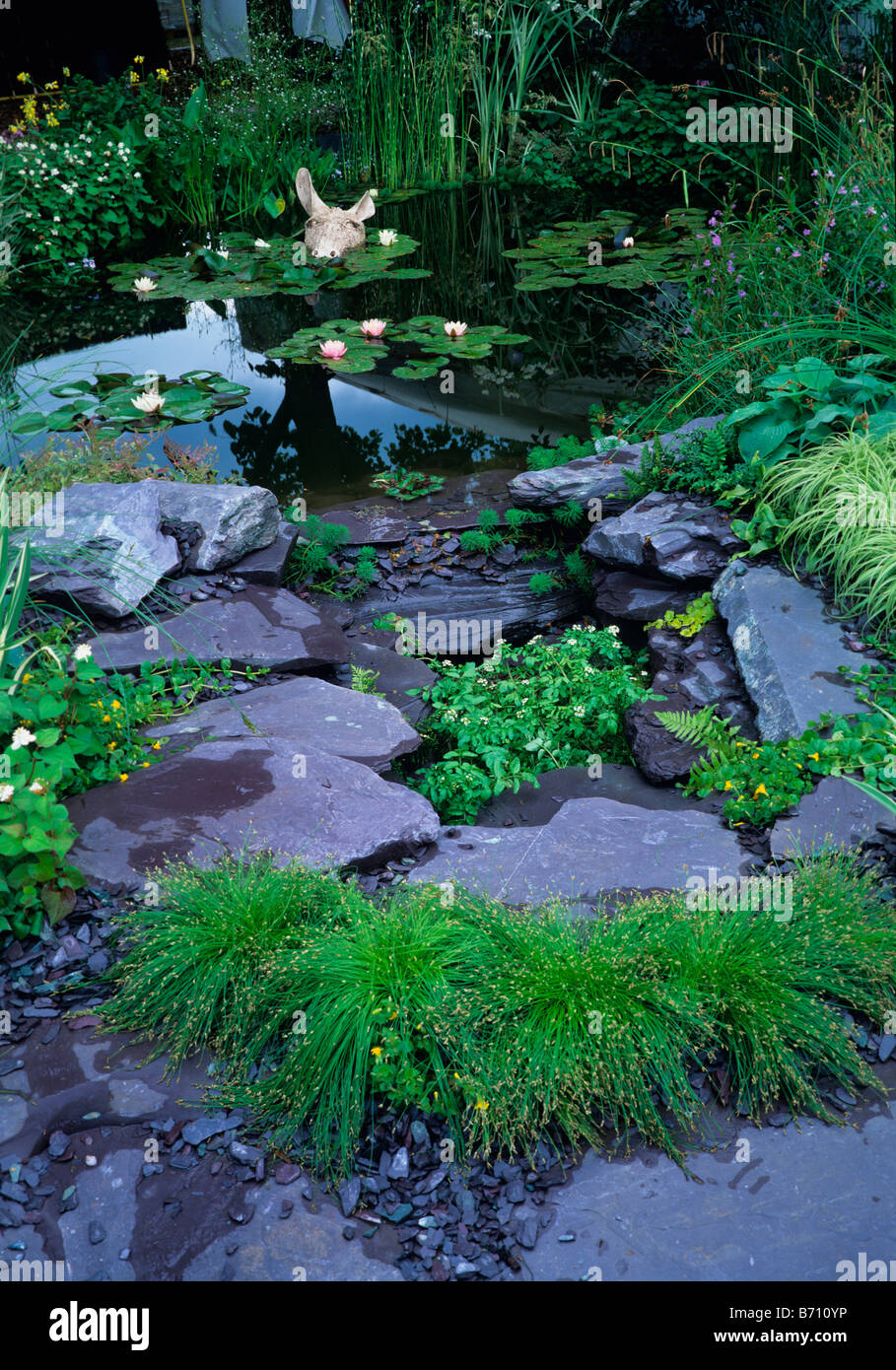 Water Lily pool and dry stream with donkey figure in the water - Stock Image