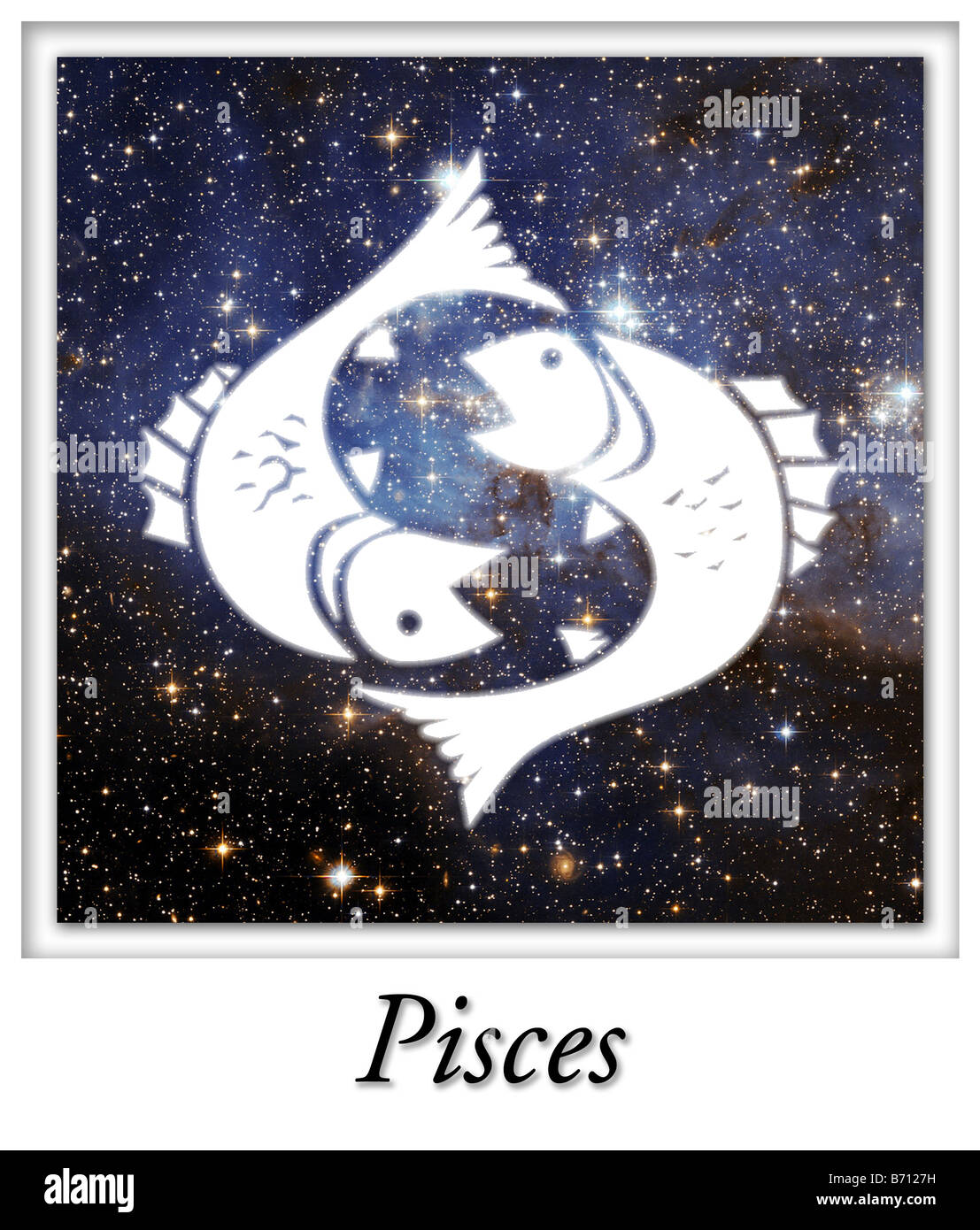 Pisces Astrological Astrology Horoscope Birth Sign - Stock Image