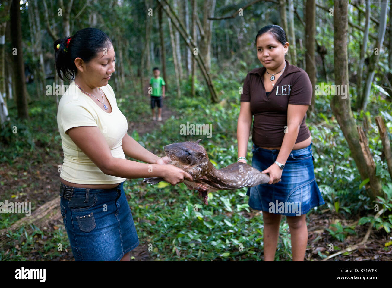 Suriname, Kwamalasamutu, Trio women with hunted paca ( Agouti paca), also known as Spotted Paca, a large rodent. - Stock Image