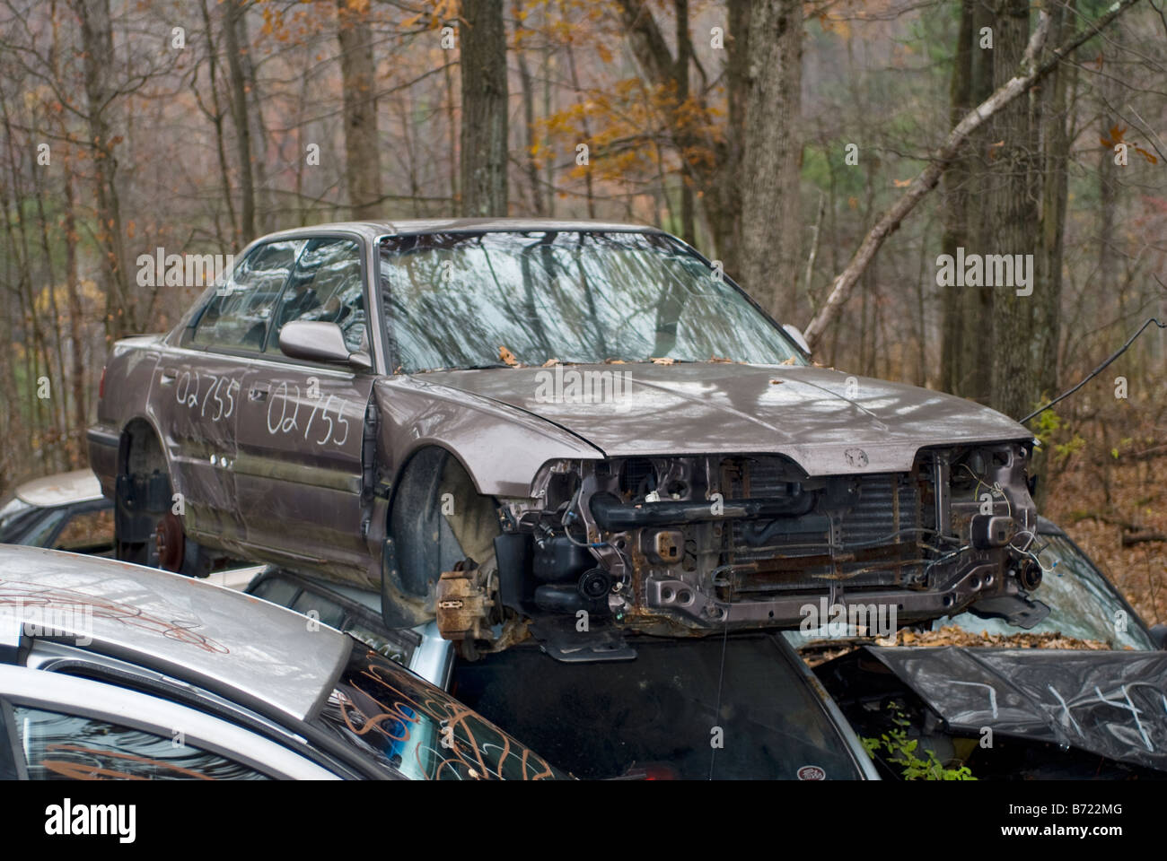 Junkyard Cars For Sale >> Automobile Junkyard With Parts Of Cars For Sale Stock Photo