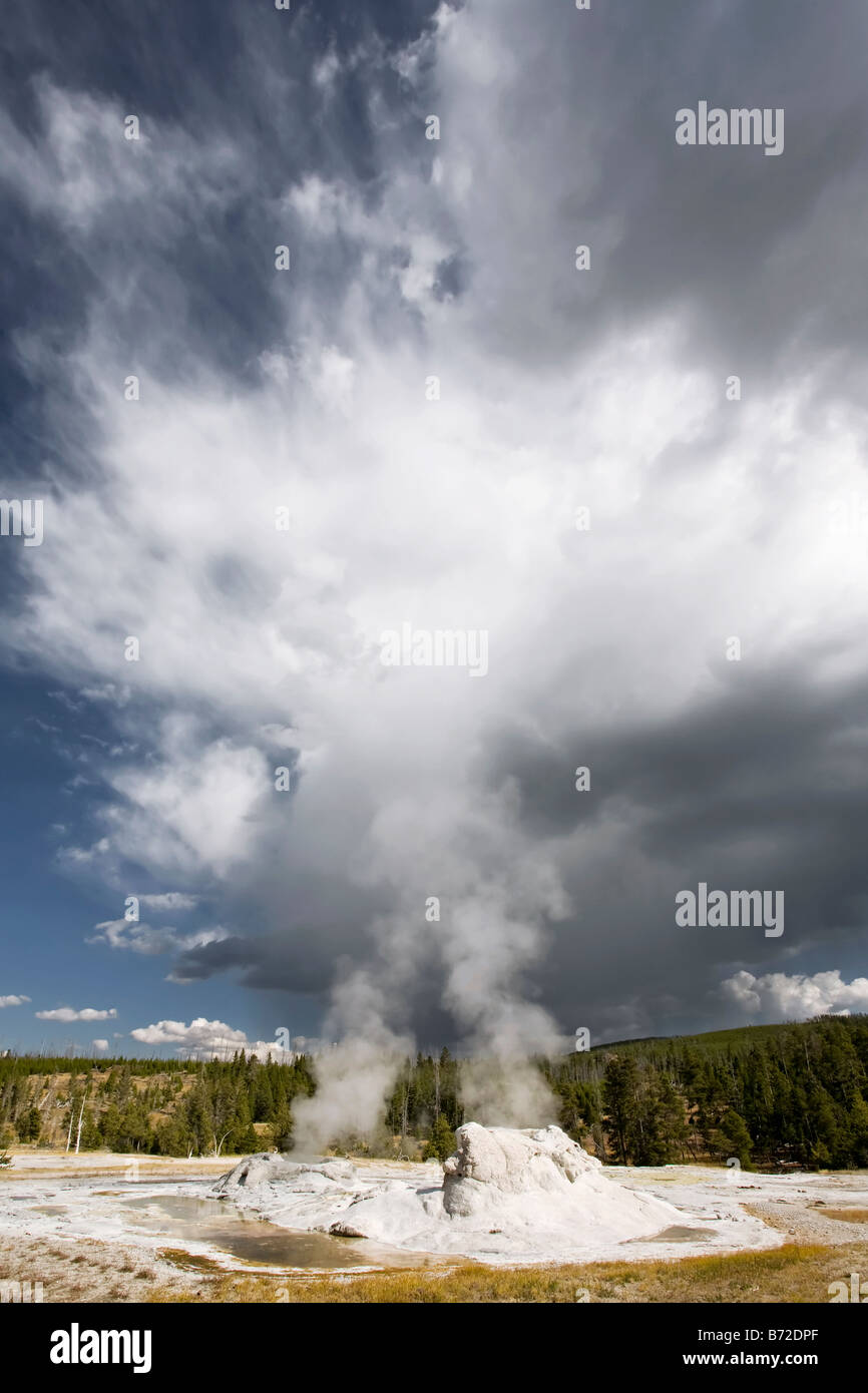 West Yellowstone s Grotto geyser steaming - Stock Image