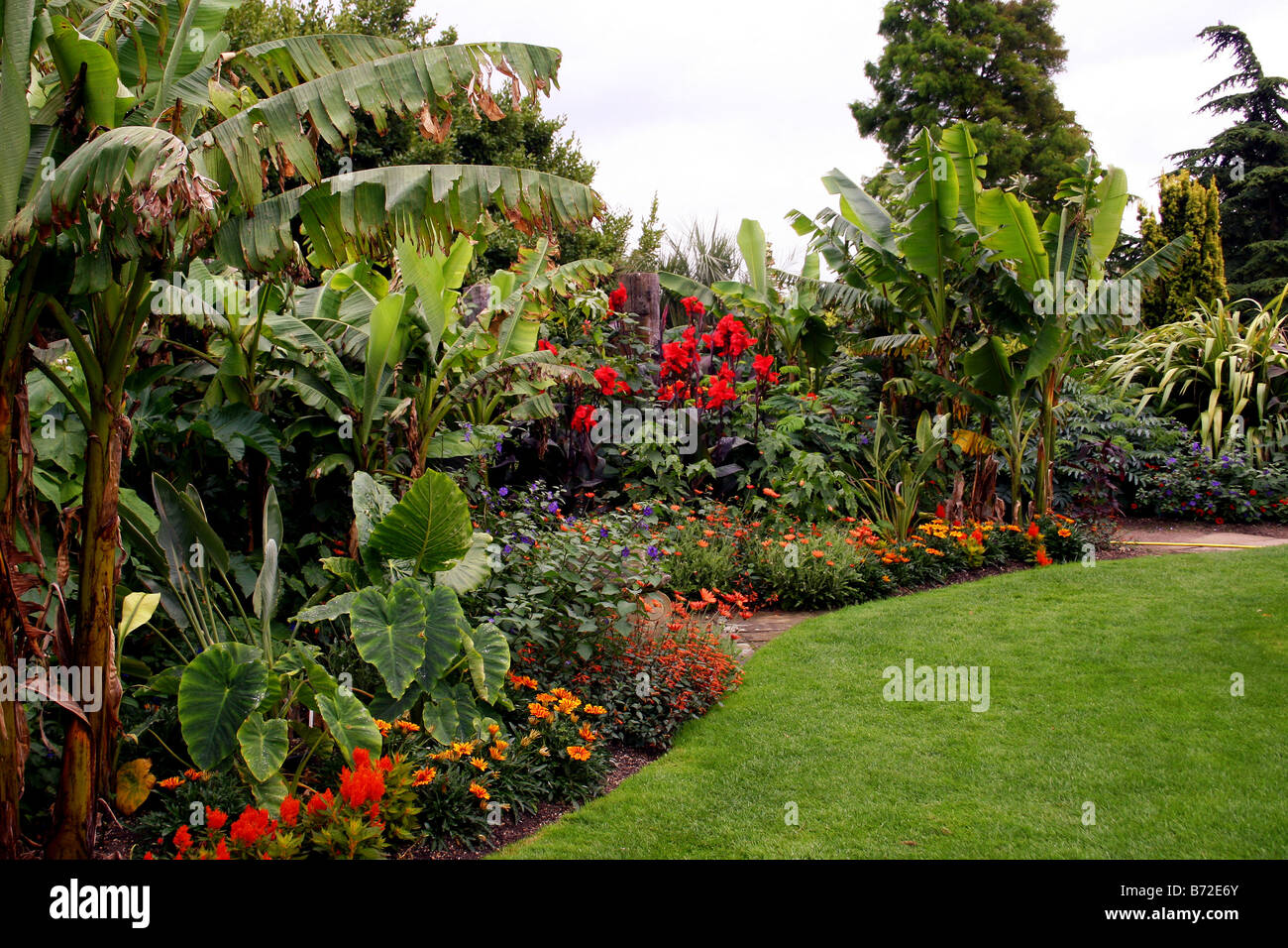 A TROPICAL BORDER WITHIN AN ENGLISH COUNTRY GARDEN. RHS HYDE HALL ESSEX UK    Stock