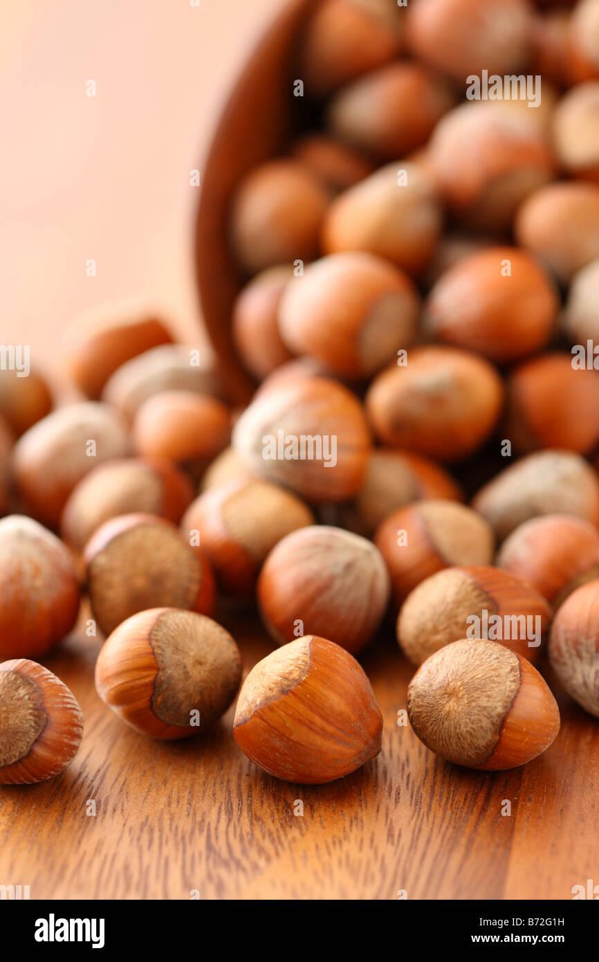 Hazelnuts on wood background - Stock Image