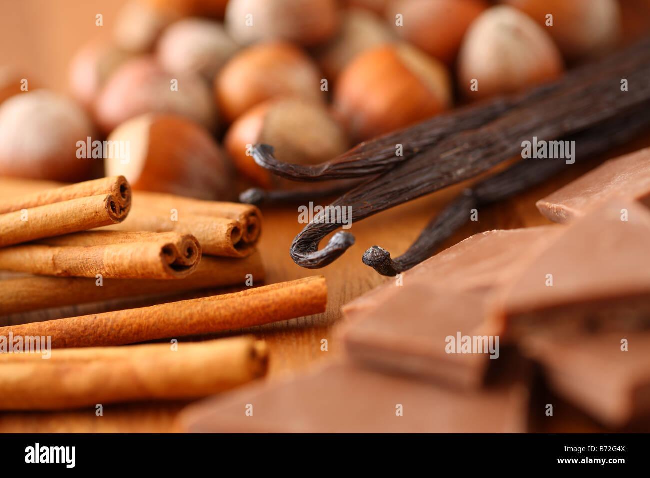 Hazelnuts Cinnamon Sticks Vanilla Beans and Chocolate - Stock Image