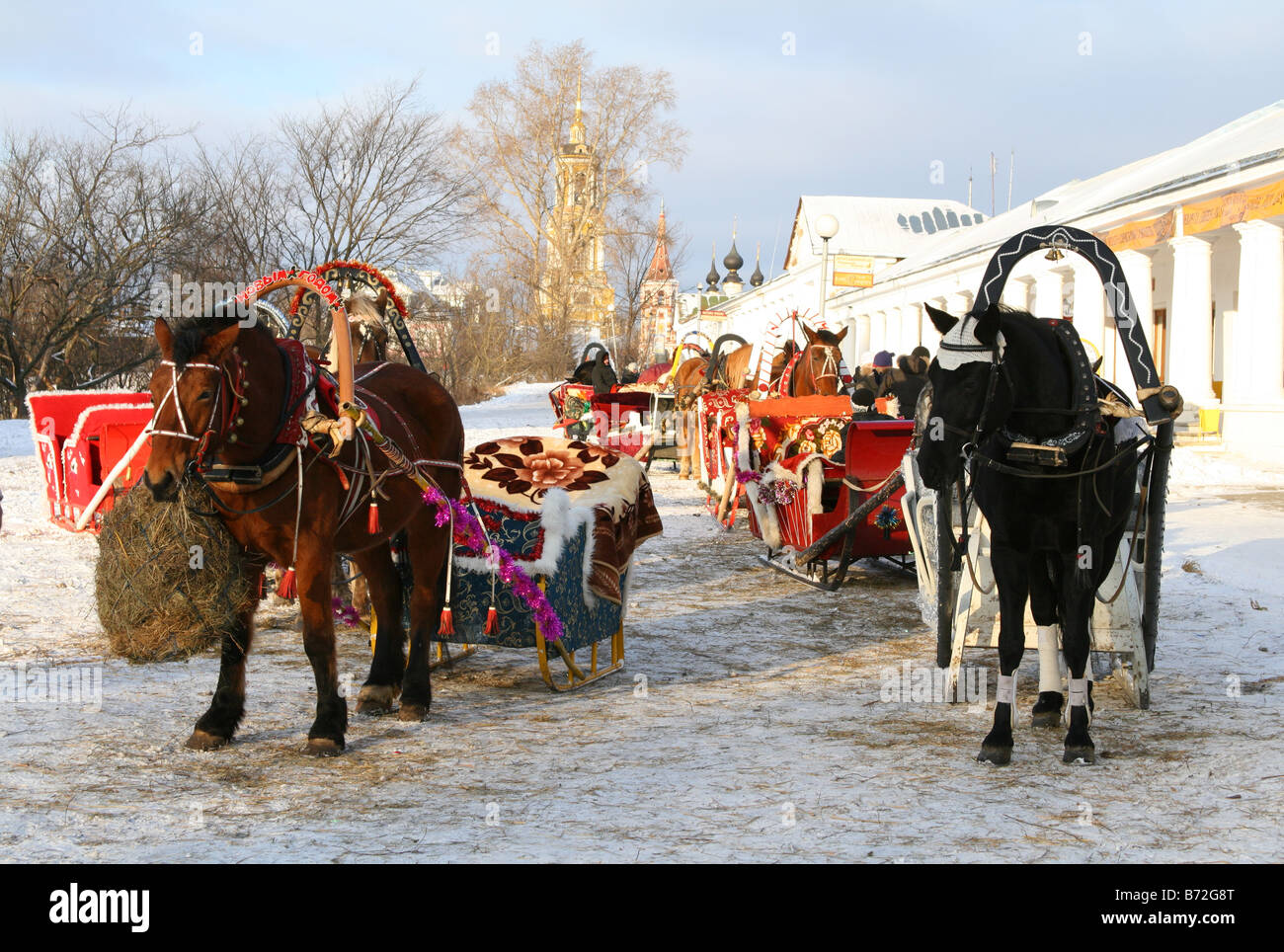 Russian sledges with horses at Suzdal, Russia. Sledge is the Russian attraction for guests and tourists - Stock Image