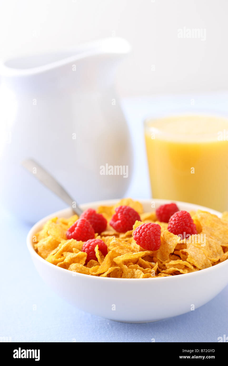 Healthy breakfast cereal fresh berries and orange juice - Stock Image
