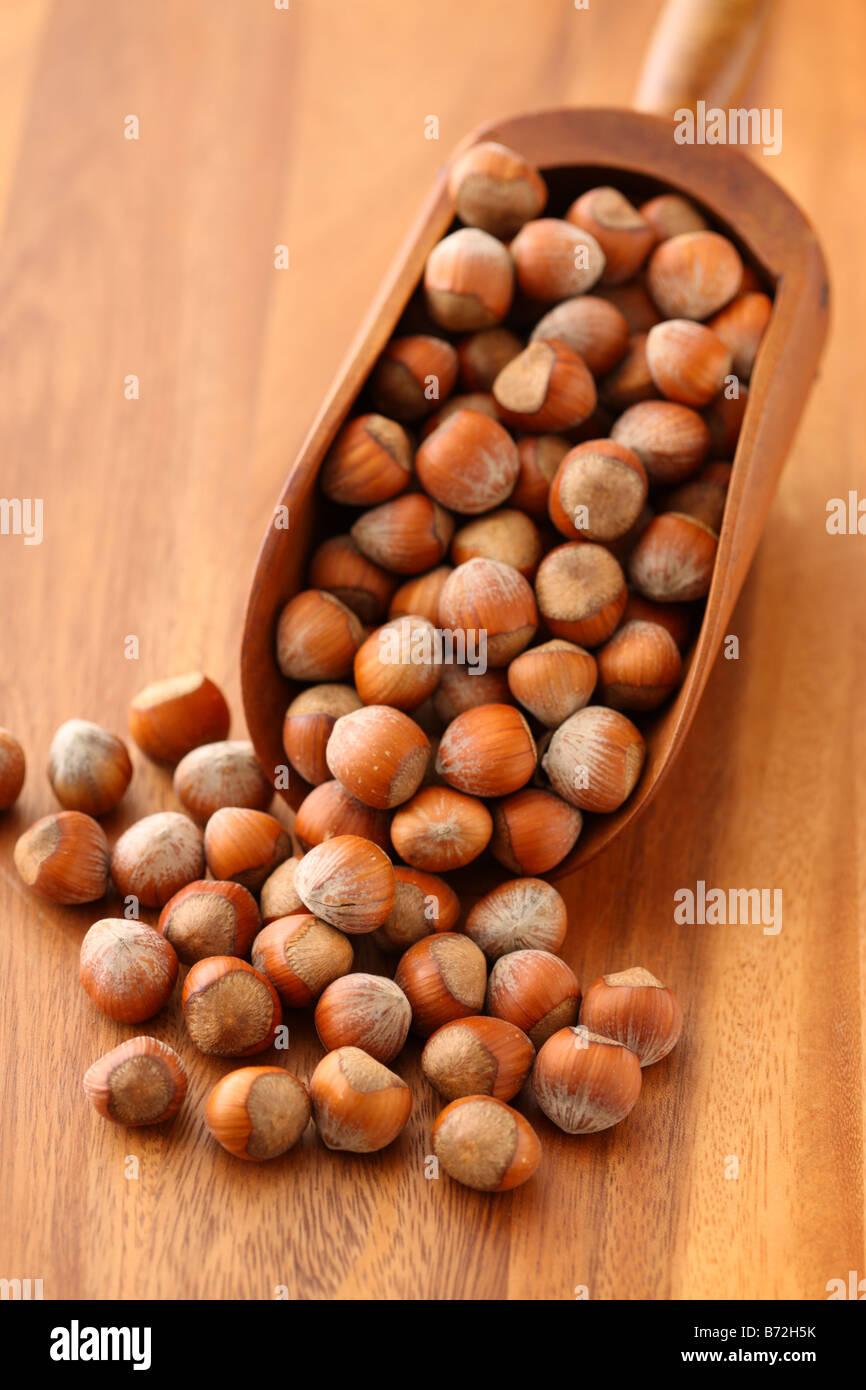 Hazelnuts in wooden scoop - Stock Image