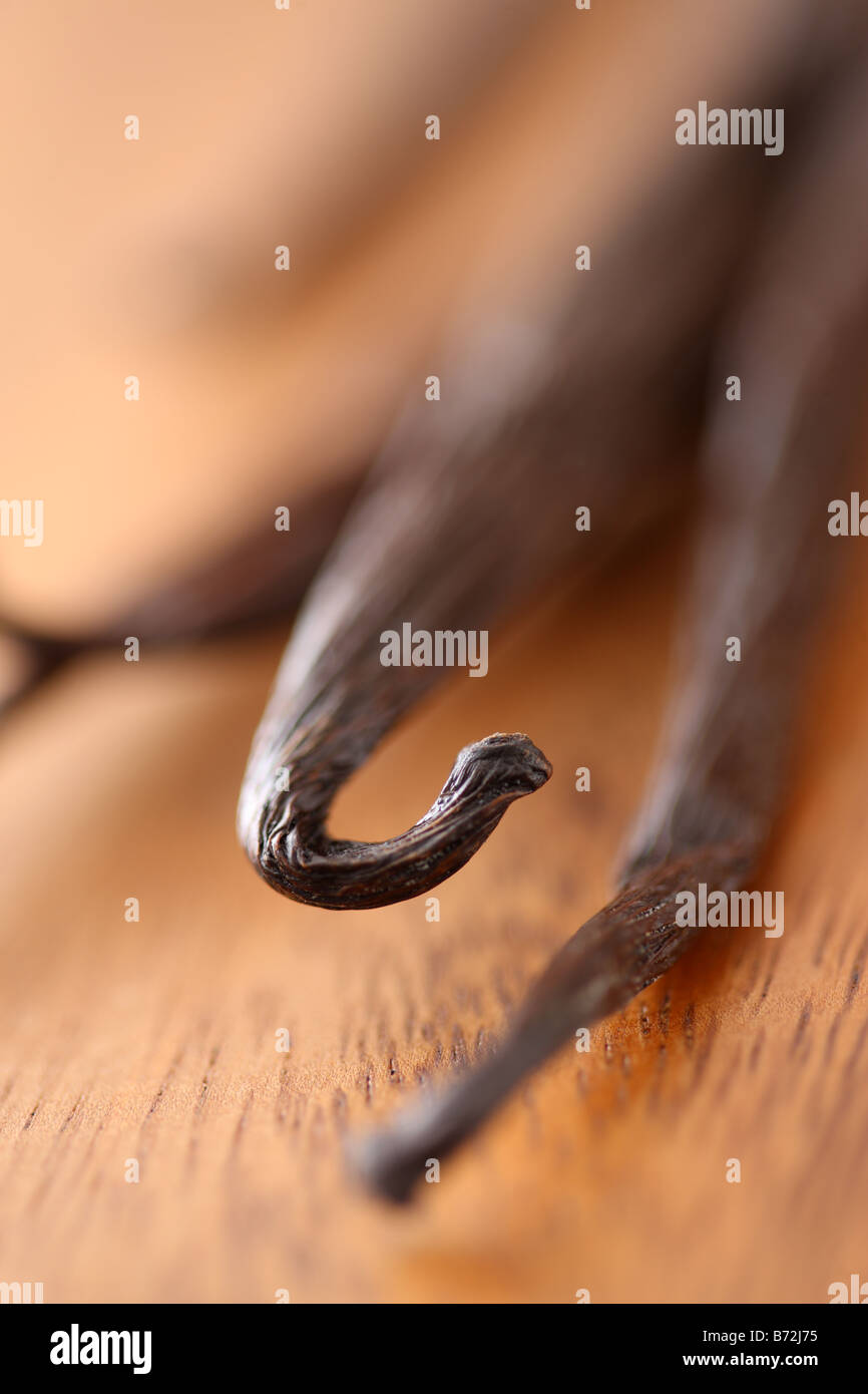 Vanilla Beans selective focus - Stock Image