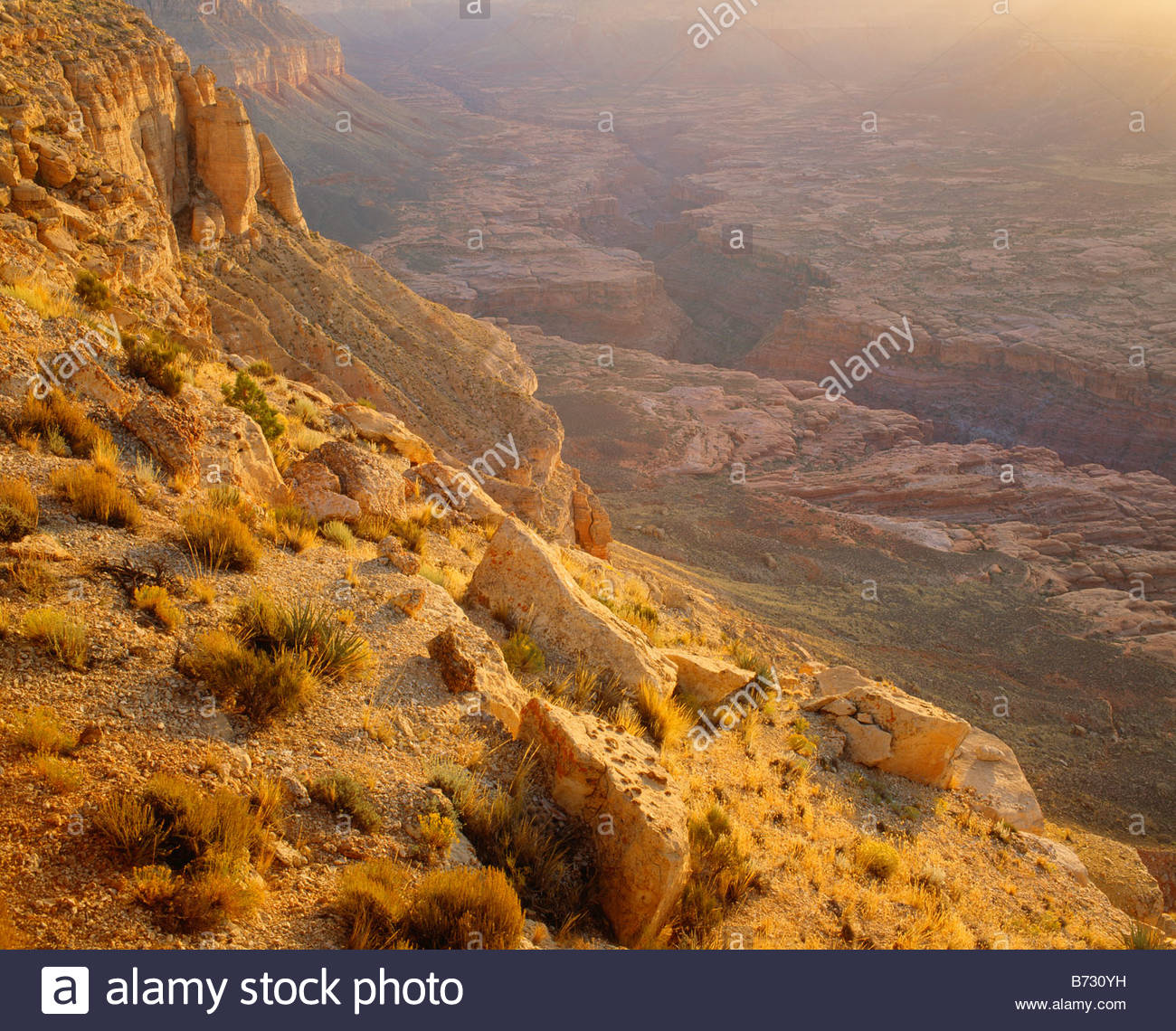 Jumpup Canyon at sunrise Kanab Creek Wilderness Area The Arizona Strip BLM Lands Kaibab National Forest Arizona - Stock Image