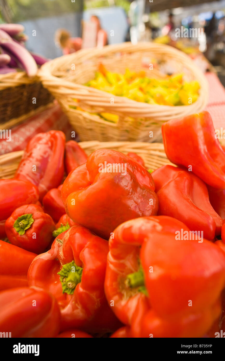 bell peppers Farmers Market Santa Barbara California United States of America - Stock Image