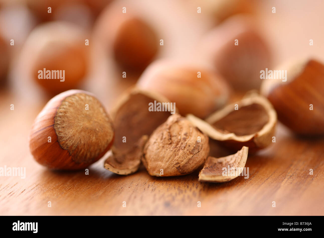 Close up of hazelnuts selective focus - Stock Image