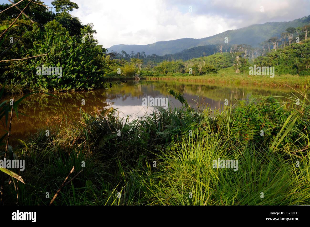 Pond above Yekepa near Dayea River Liberia - Stock Image