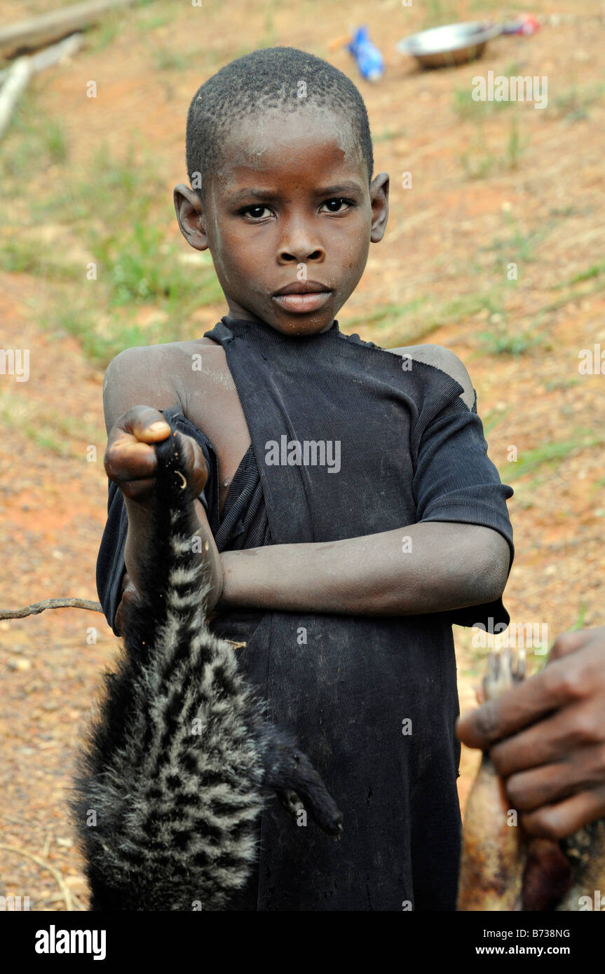 Young boy offers live African civet as bushmeat for sale on side of road Liberia - Stock Image