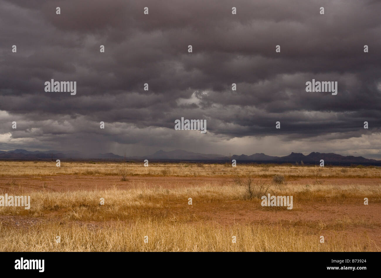 Grasslands and mountains near Douglas on the Arizona Mexico border on a stormy winter evening - Stock Image