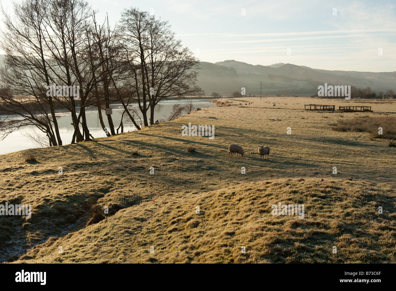 Early morning in the Dyfi Valley biosphere - cold frosty weather, January 2009, Wales UK - Stock Image