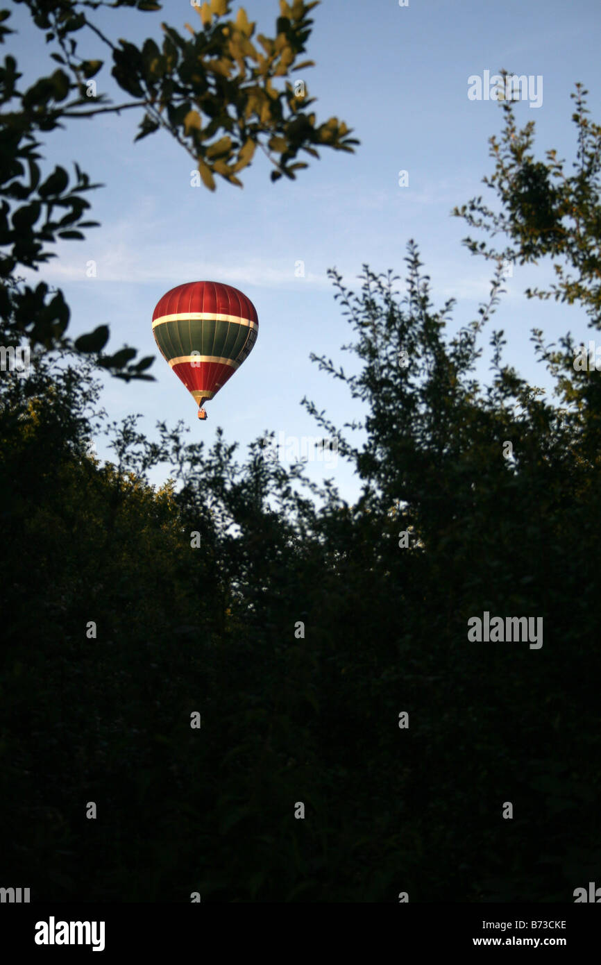 A HOT AIR BALOON FLOATS ABOVE THE SOUTH DOWNS, SEEN BETWEEN THE TREES. - Stock Image