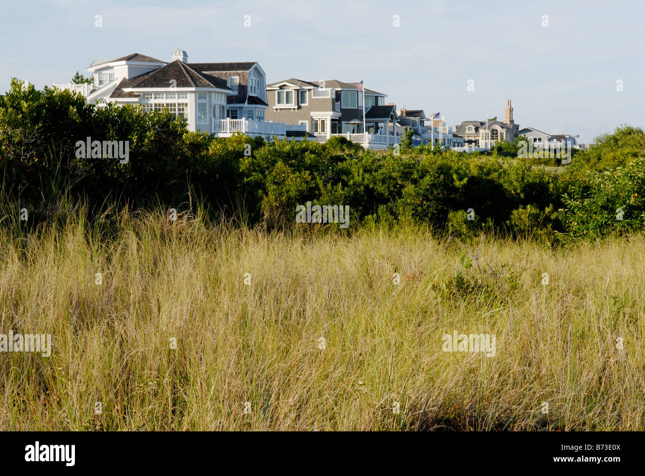 Oceanside upscale houses, Avalon, New Jersey. A buffer of dune grasses protects the shoreline from erosion. - Stock Image