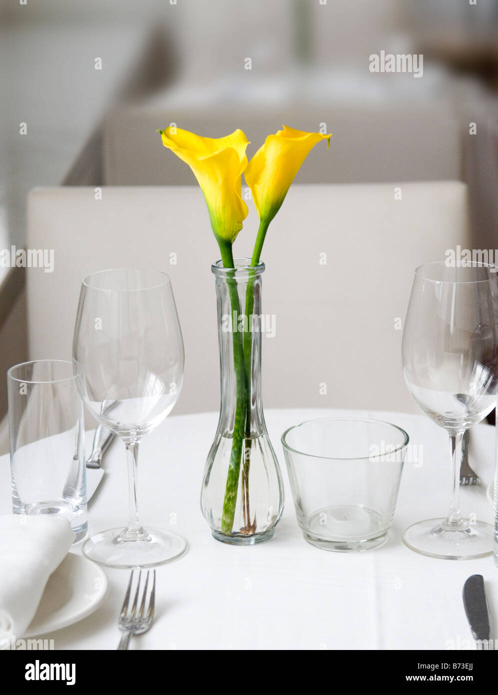 Yellow flowers and table setting Miami Beach Florida restaurant & Yellow flowers and table setting Miami Beach Florida restaurant ...