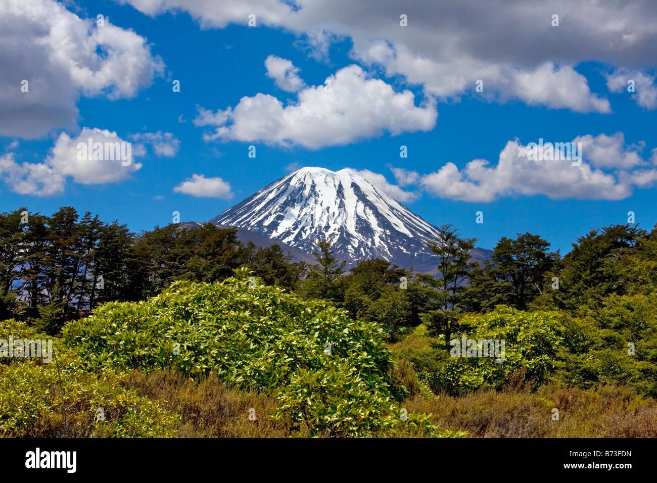 Mount Ngauruhoe.  New Zealand, North Island, Tongariro National Park, Central Plateau. - Stock Image