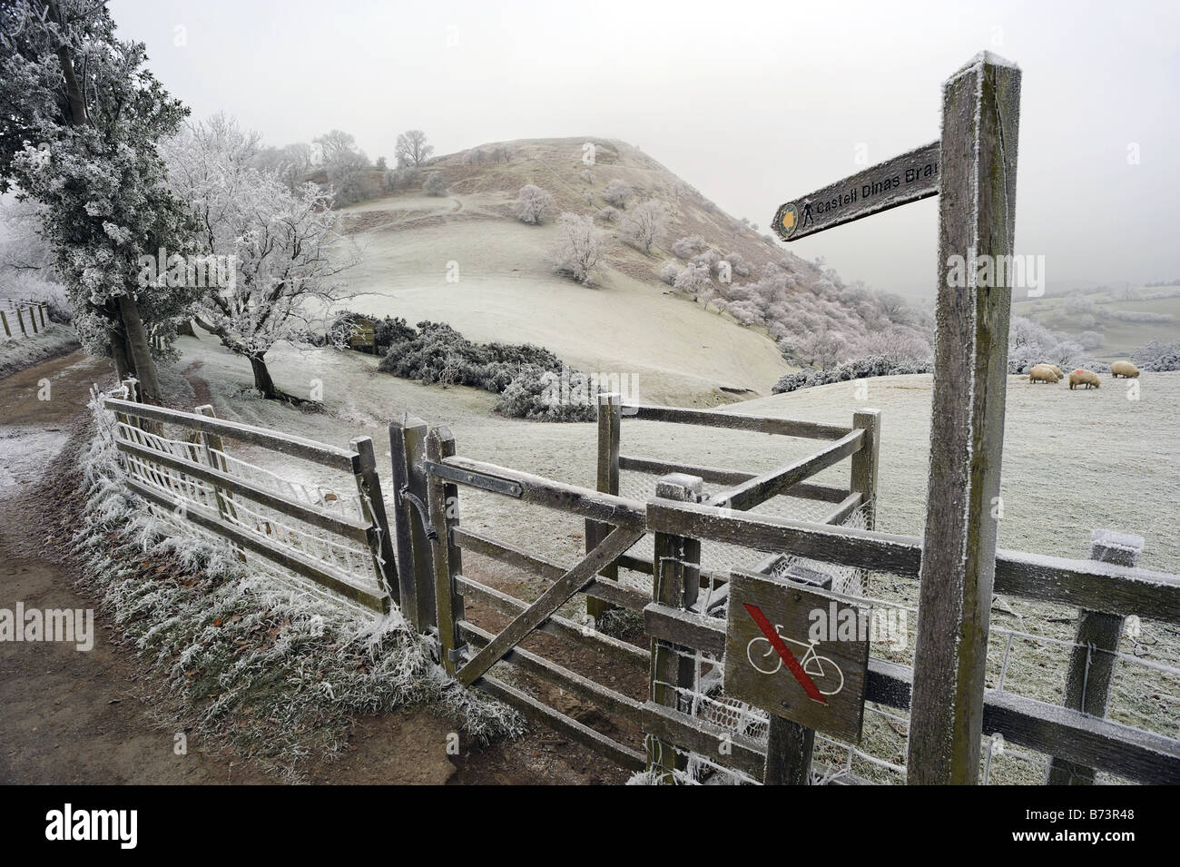 View of Castell Dinas Bran, on the hill above Llangollen, Wales, on cold frosty winter day Stock Photo