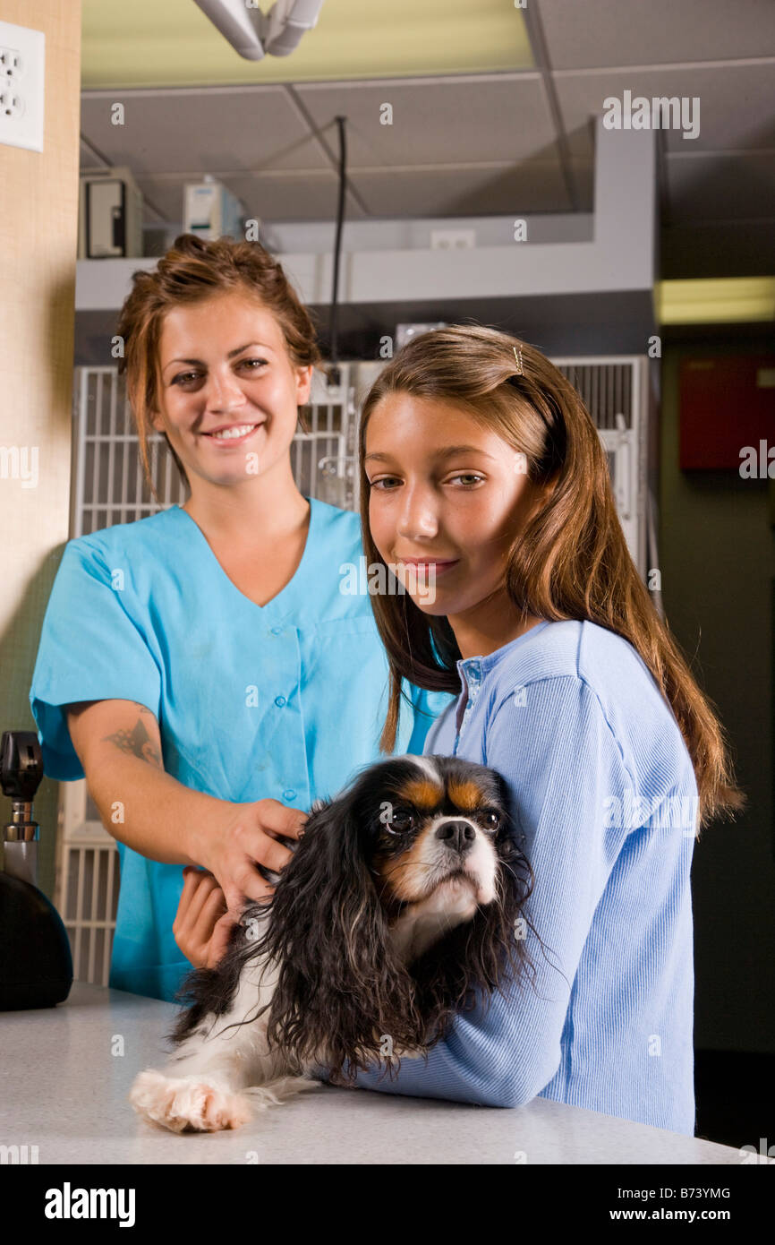 Veterinary Assistant Stock Photos Veterinary Assistant Stock
