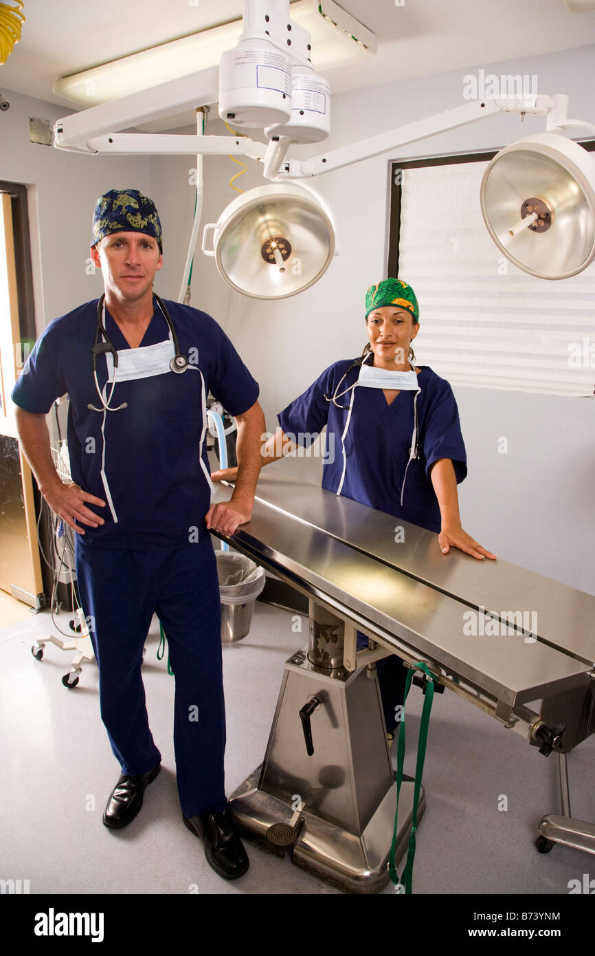 Two veterinarians standing in empty examination or operating room Stock Photo