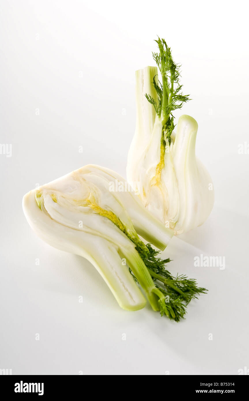 Quarters of a raw fennel bulb. Showing the lovely texture inside and its bright delicate leaves. Aniseed flavoured - Stock Image