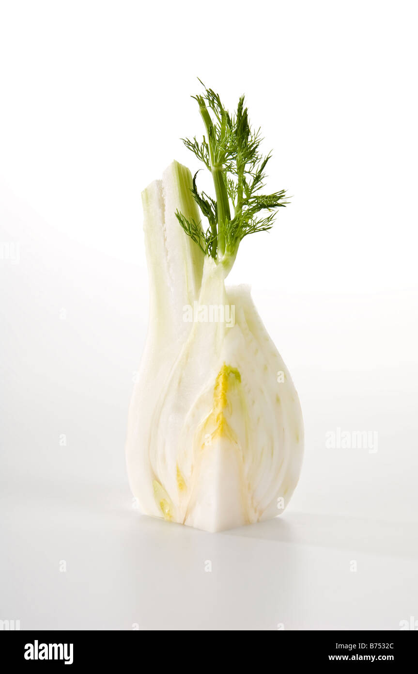 Quarter of a raw fennel bulb. Showing the lovely texture inside and its bright delicate leaves. Aniseed flavoured - Stock Image