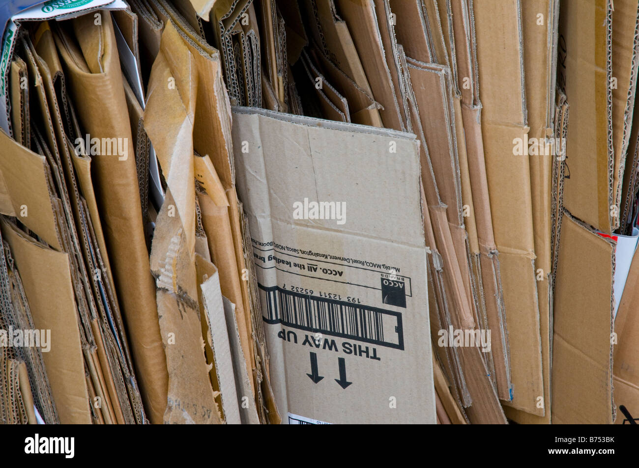 Cardboard packaging for recycling - Stock Image
