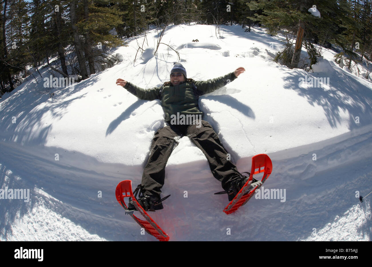A snowshoer falls backwards into the snow to make a snow angel, Coal Lake Trail, Whitehorse, Yukon, Canada - Stock Image