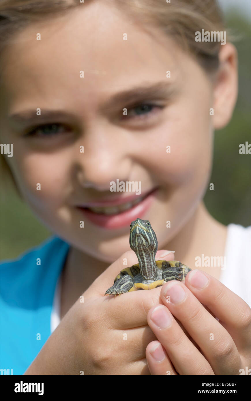 Turtle held by eight year old girl, Winnipeg, Canada - Stock Image