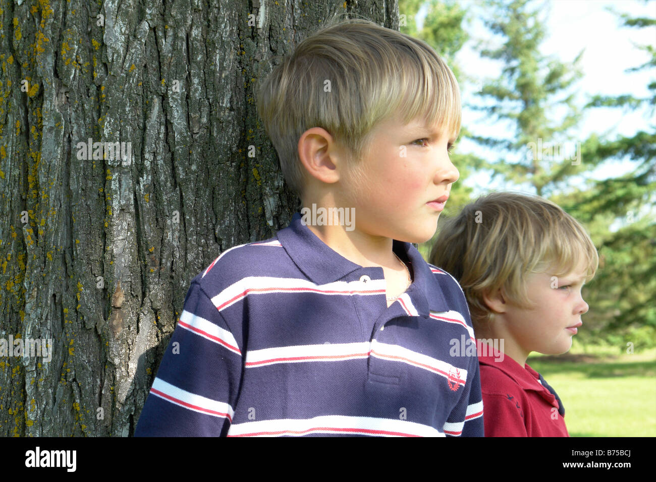 2 brothers standing beside tree, Winnipeg, Canada - Stock Image