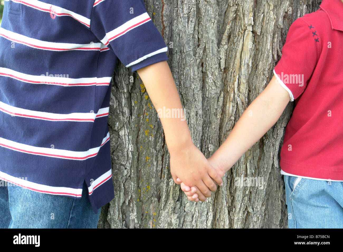 2 brothers hold hands standing beside tree, Winnipeg, Canada - Stock Image