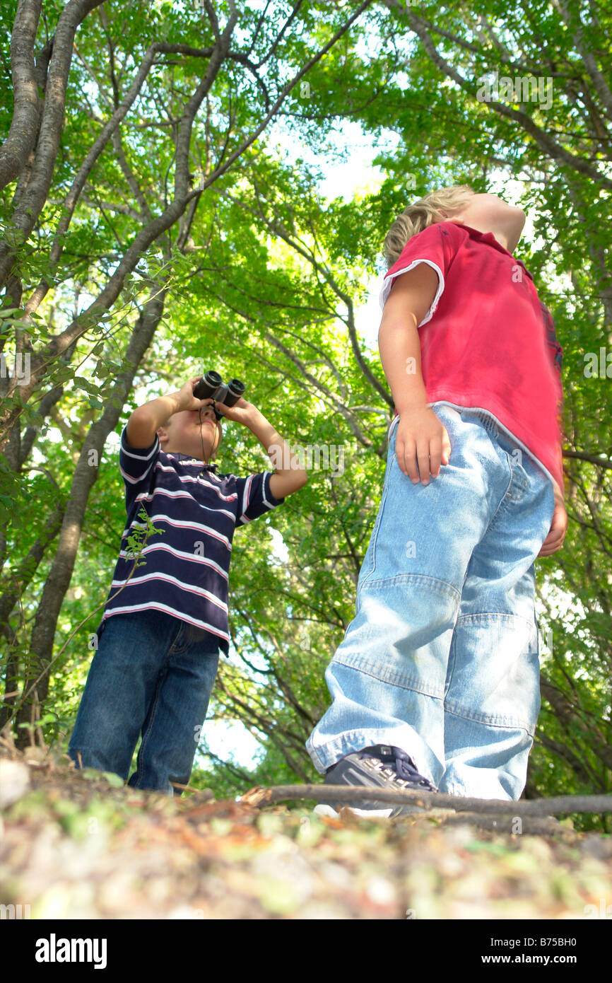 Four and six year old brothers look upward, on walking trail in forest, Winnipeg, Canada - Stock Image