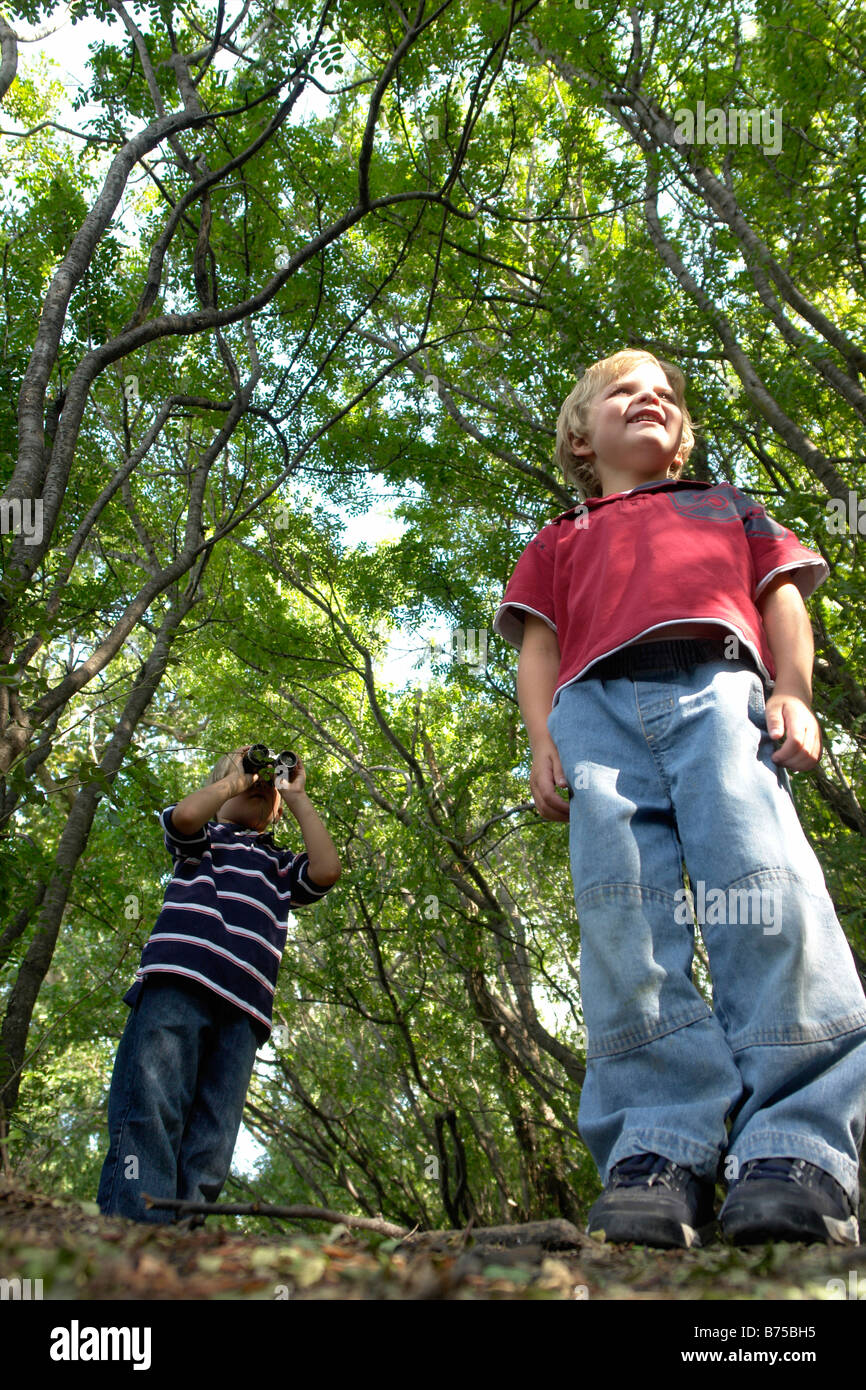 Four and six year old brothers on walking trail in forest, Winnipeg, Canada - Stock Image