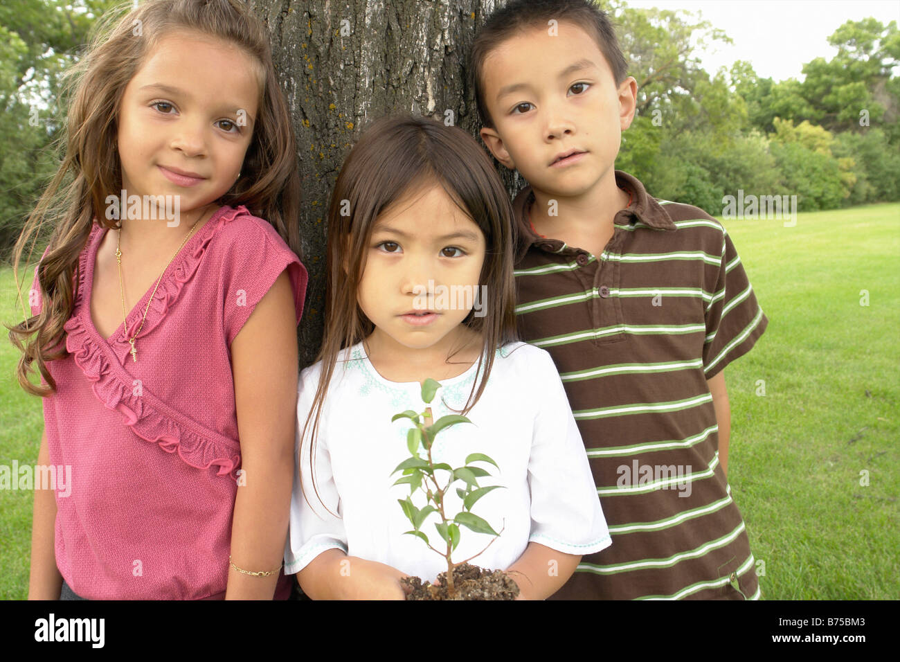 Five year old girl holds small tree, beside seven year old boy and girl, Winnipeg, Canada - Stock Image