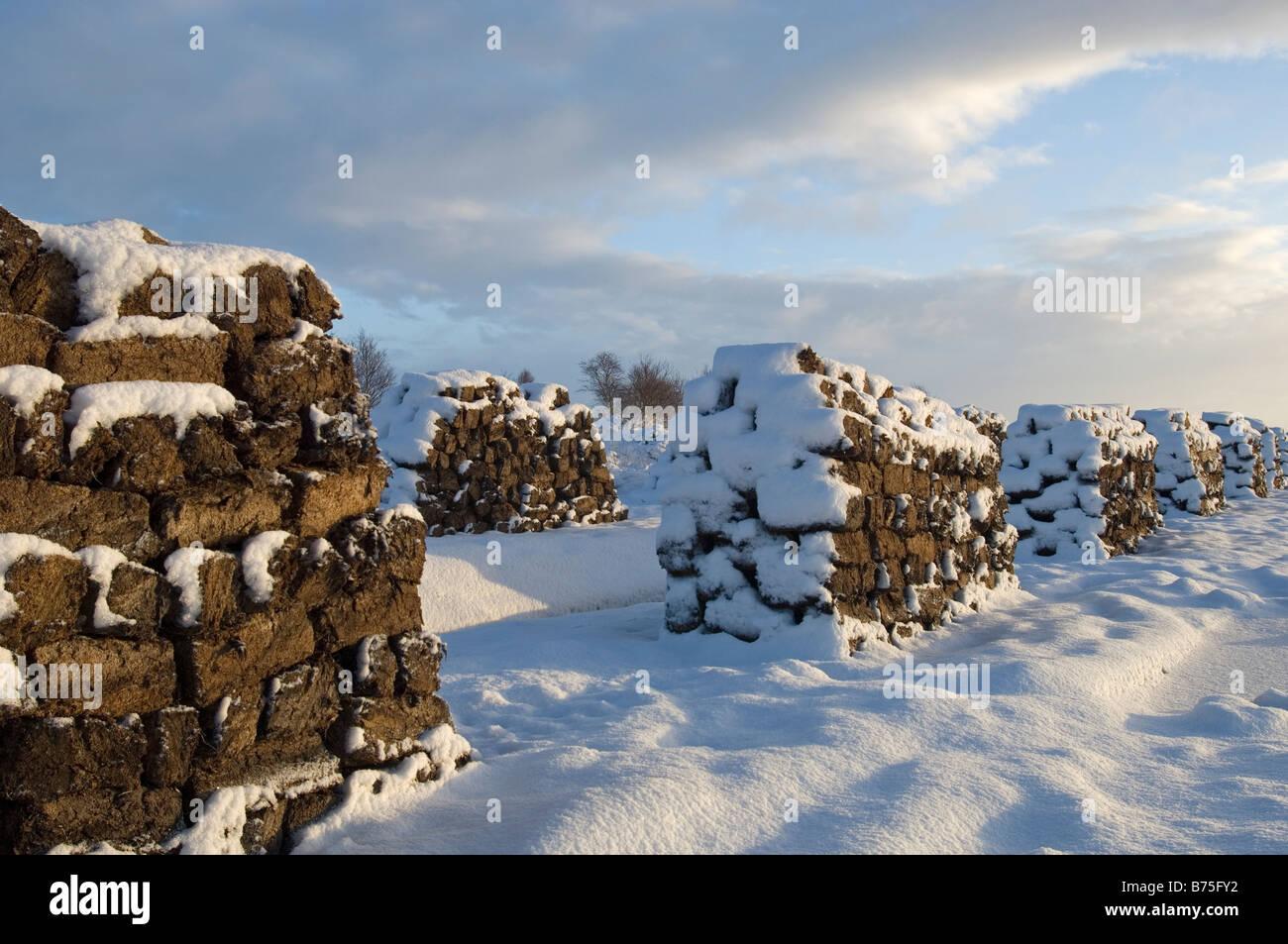 peat in the moor snowed under  winter in the moor Stock Photo