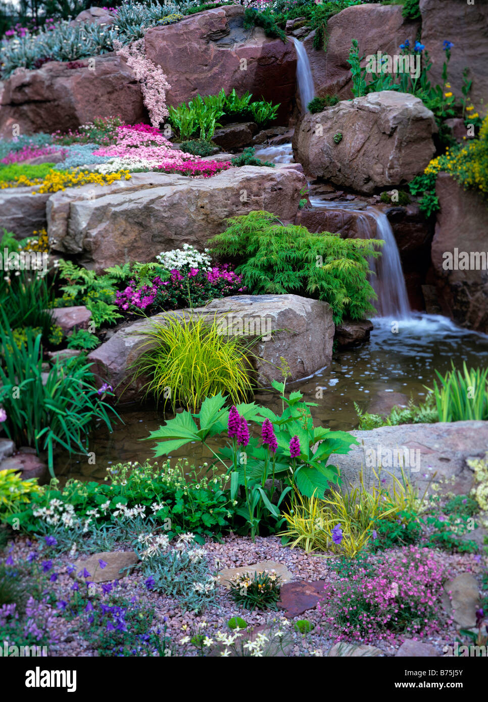 Colourful alpine planted rockery and waterfall - Stock Image