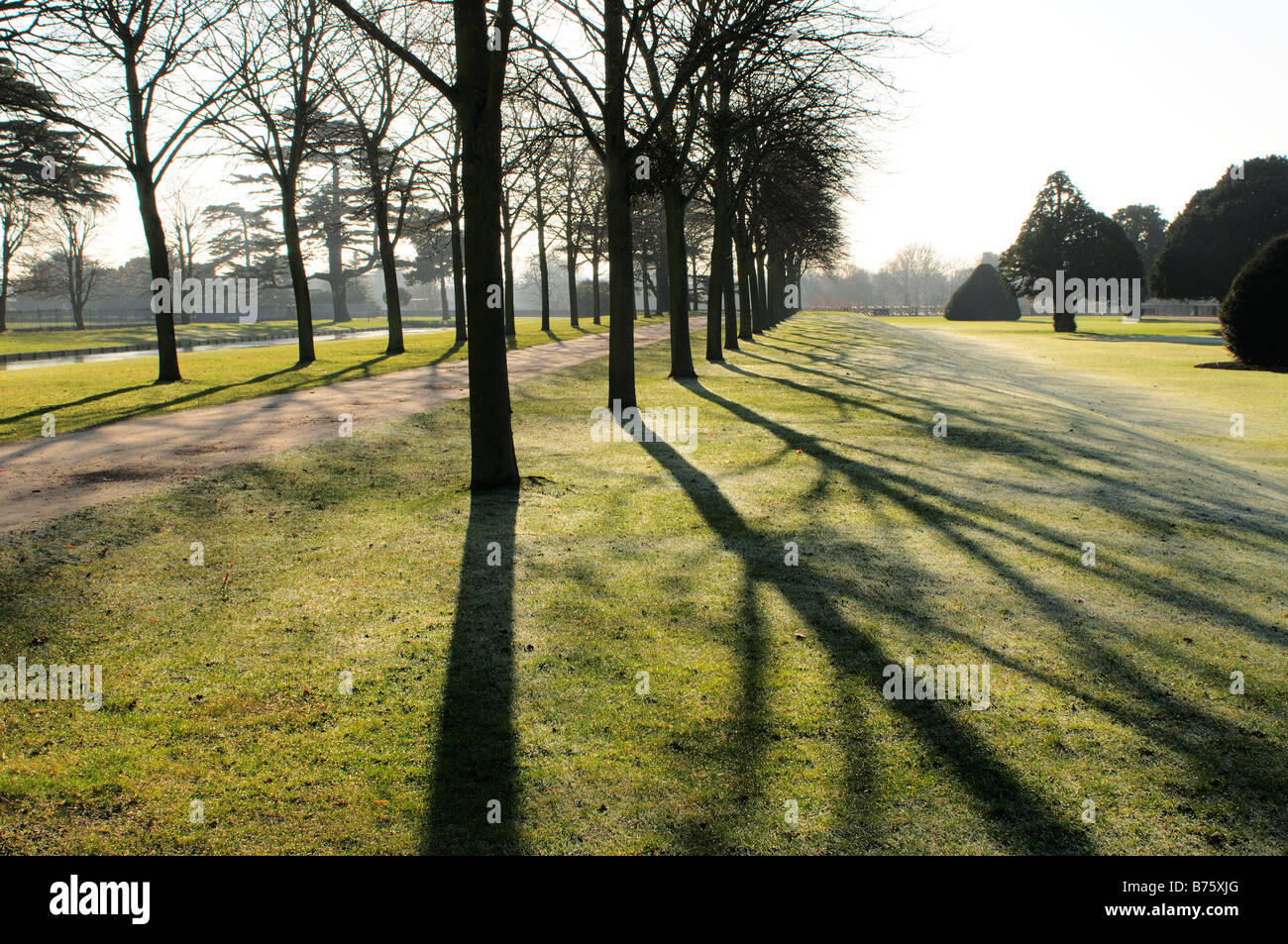 Hampton Court grounds in the winter with frost on the ground Surrey - Stock Image
