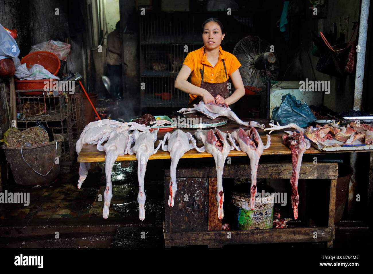 Chinese woman with slaughtered ducks on display on an open market, Yangshuo, Guangxi region, China - Stock Image