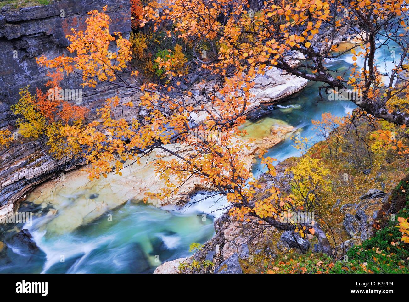 abisko jakka river njulla mountain abisko canyon landscape abisko national park norrbotten lapland sweden europe Stock Photo